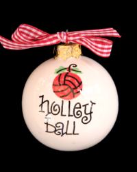 Pitter Platters Sports Ball Volleyball Holley Ball
